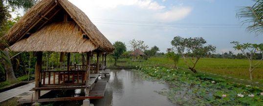 Outbund Bali Gazebo JU