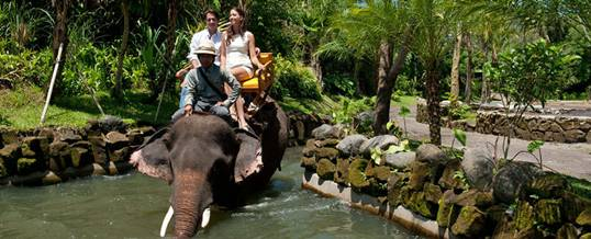 Outing Bali Gajah Expedisi