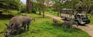 Wisata Petualangan Bali Safari And Marine Park 2016