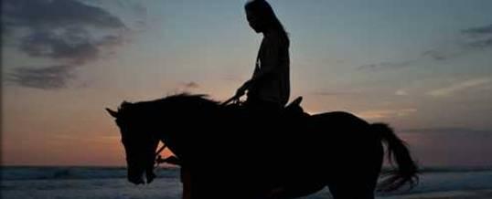 Adventure di Bali Horse Riding