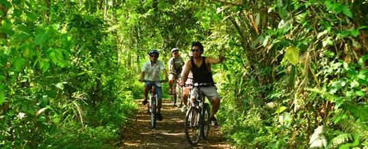 Paket Outing di Bali Luwus Village Cycling