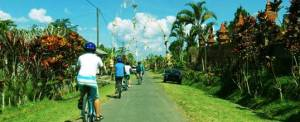 Cycling Bali Nature Adventure Trip