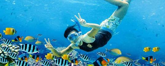 Snorkeling Bali Marine Walk Adventure