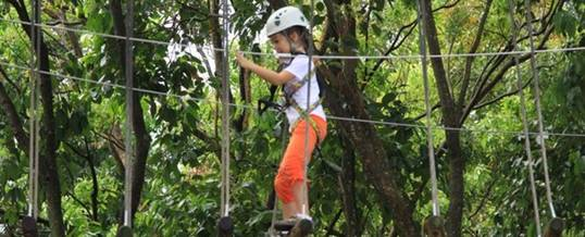 Adventure Forest Singapore Kid