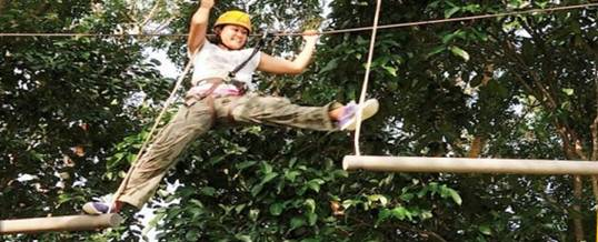 Adventure Singapore Forest Adult