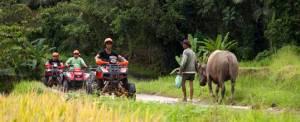 Bali ATV Batukaru Tabanan