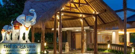 Paket Outing di Bali – The Lokha Ubud