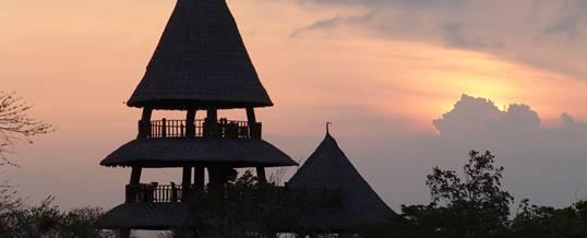 Paket Outing The Menjangan Taman Nasional Bali Barat