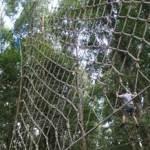 Jaring Bali Outbound WWF