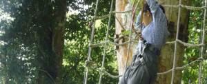 Outbound di Bali Treetop Kebun Raya Bedugul 10