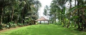 Outbound di Bali The Bali Kuno - Camping Ground