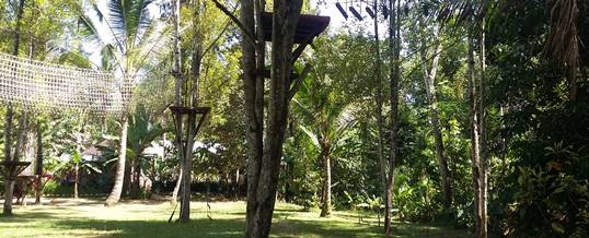 Outbound di Bali Jungle Adventure - Rindang 20718