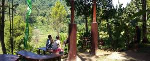 Outbound di Bali Jungle Adventure - Swing View Sawah 20718