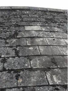 All you need to know about an asbestos roof