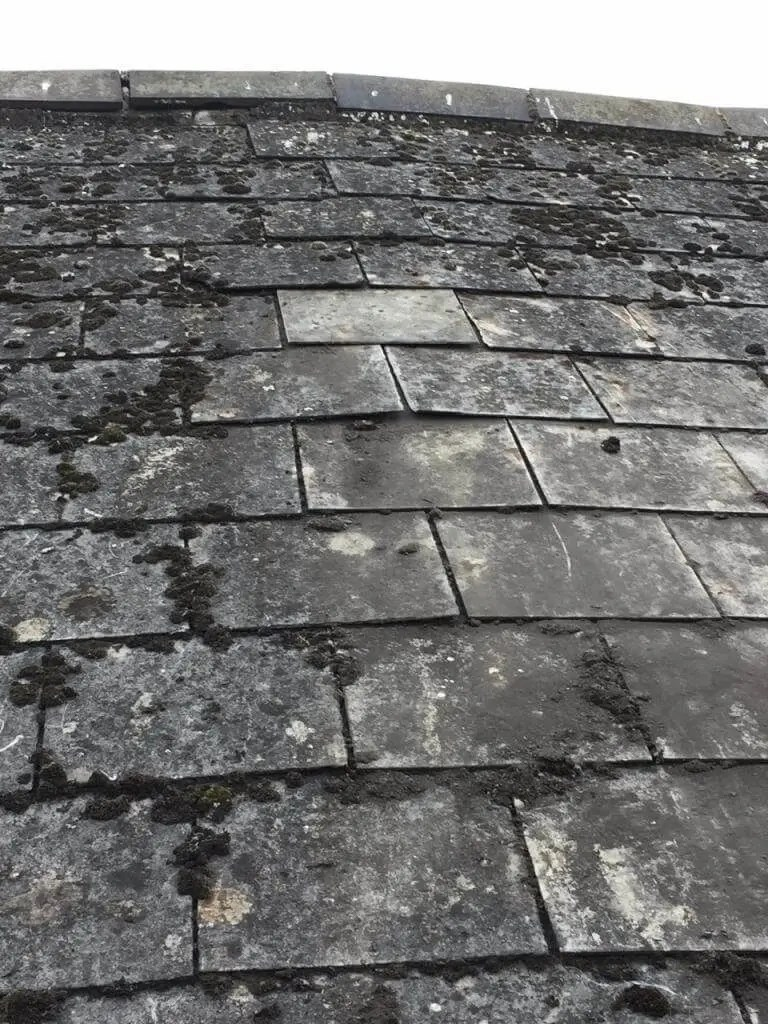 Old cement slates