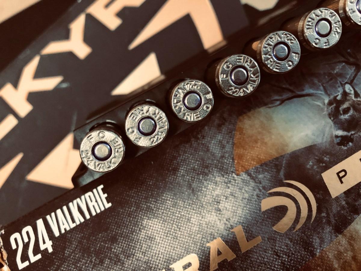 .224 Valkyrie – Fondelli