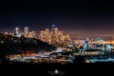 Seattle from Ella Bailey Park