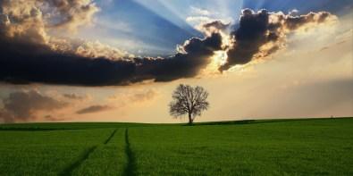 natura-stare-bene