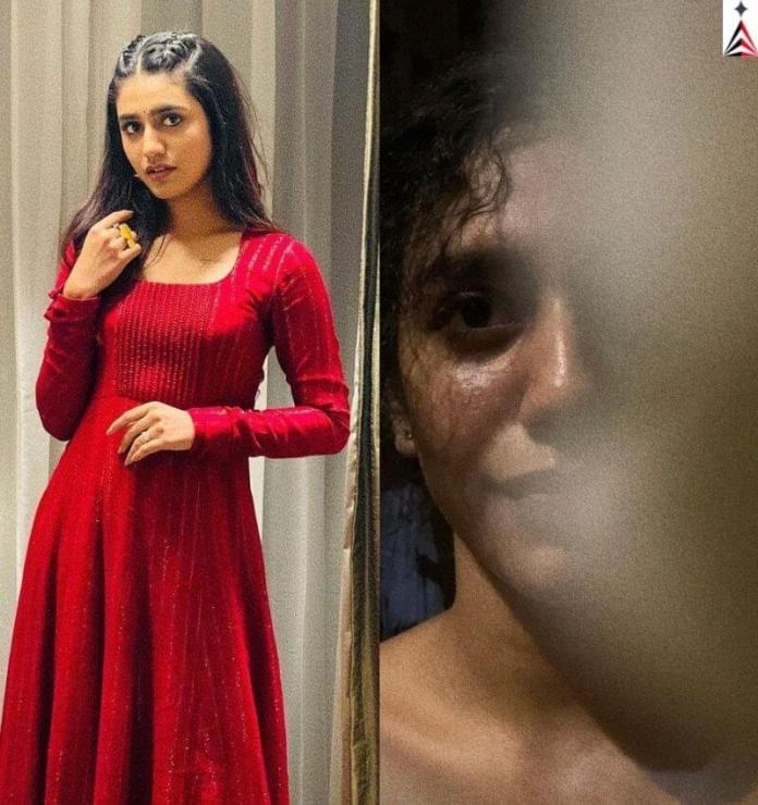 Priya Prakash Varrier Hot Photo