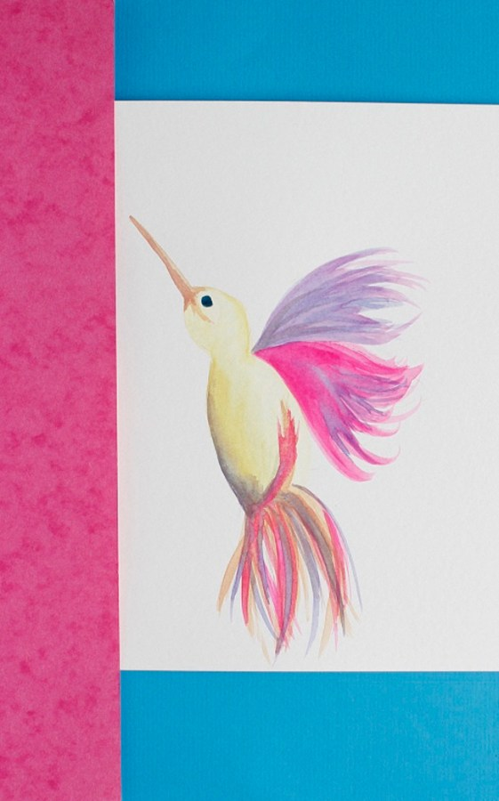 Tropical bird illustration painting by Arnold & Bird - product development consultancy and design