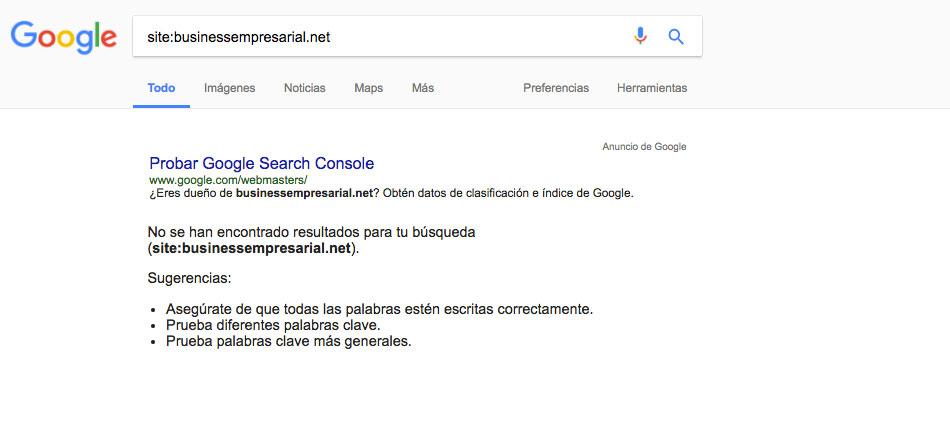 businessempresarial busqueda google