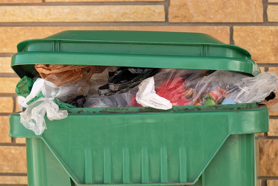 Trash & Refuse Pickup