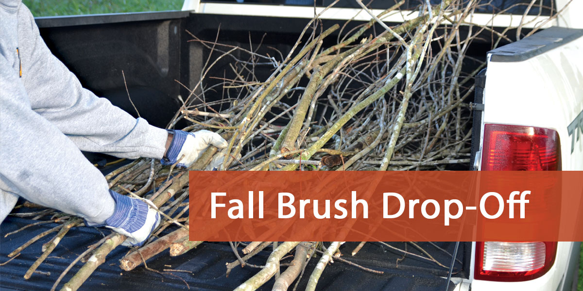Arnold Fall Brush Drop-Off Header Slider