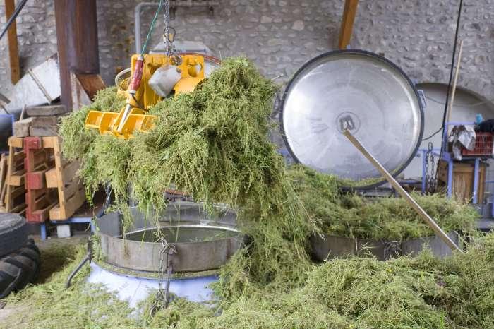 Destillation von ätherischen Ölen