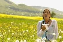 allergie 2 - Comment Me Soigner Avec Les Huiles Essentielles En Alliant Efficacité et Confiance