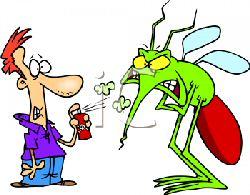 Anti moustique naturel huiles essentielles