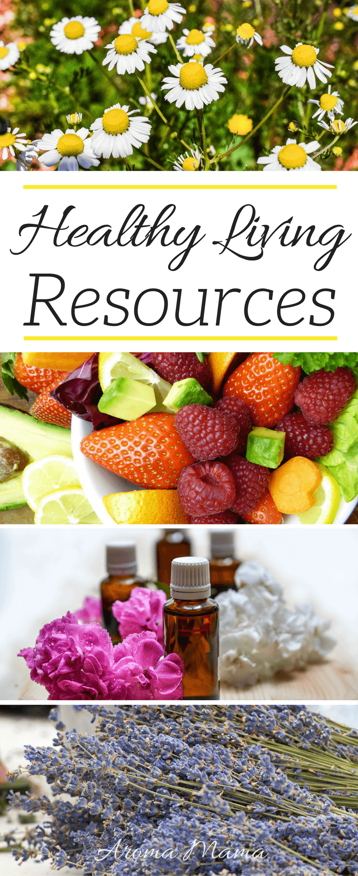 Healthy Living Resources is full of resources for anyone that has goals of living a healthier lifestyle. It includes organic and non-GMO food, skin care, essential oils, babies, kids, educational, and health resources.