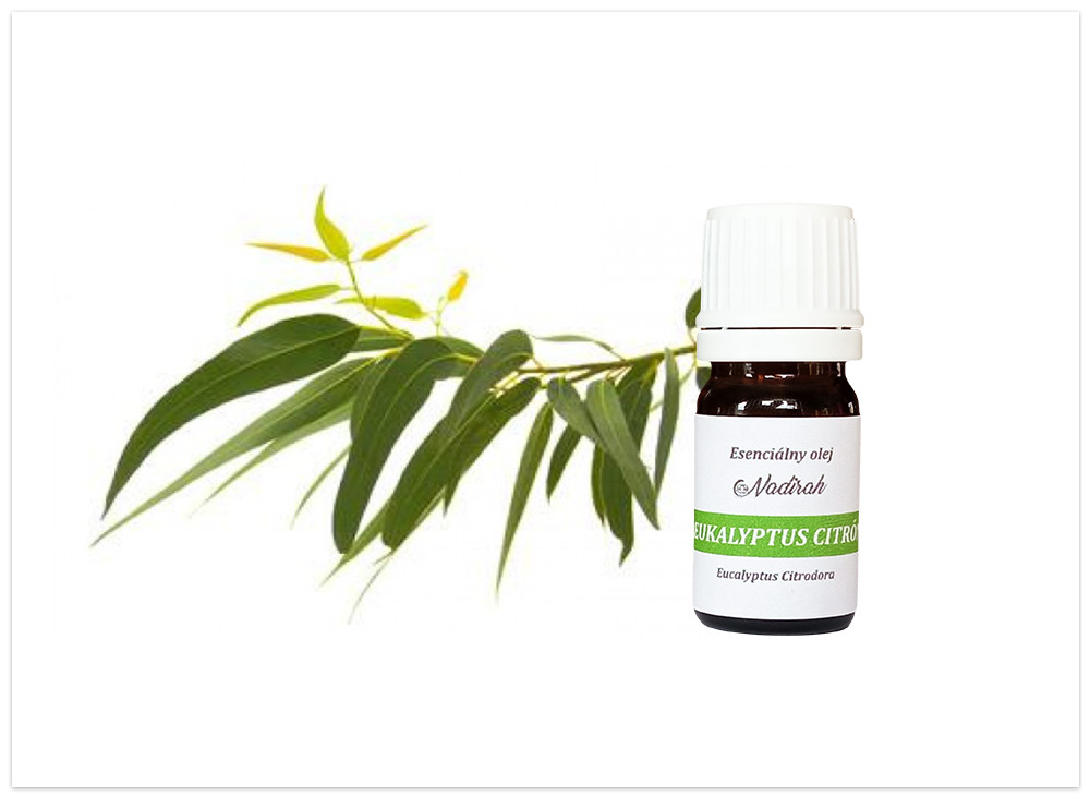 Esenciálny olej Eukalyptus citron nový