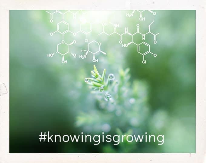 #knowingisgrowing