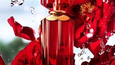 صورة أسطورة الورود من شوبارد الحب