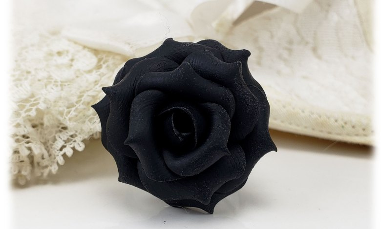 صورة ماذا تعرف عن الورود السوداء؟