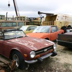 Triumph TR6, TR7, TR3 and Porsche 914 are returning to the earth by the roadside.