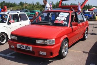 British Leyland and BMC Show (55)