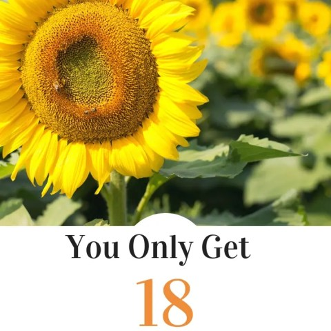 You Only Get 18 Summers – #18SummerWishlist