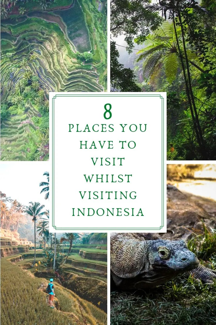 8 Places You HAVE to Visit Whilst Visiting Indonesia. Indonesia is one of Asia's most beautiful countries. Discover busy Jakarta. Visit Bandung & sample some of the local cuisine. See Bali & the Nusa Islands. See tropical jungles, lush waterfalls, rice terraces, the sacred monkey forest & meet komodo dragons in their natural habitat. Plus find out more about Seminyak, Lombak & Pontianak by reading this post on the best and most brilliant places to go & stay in the region.