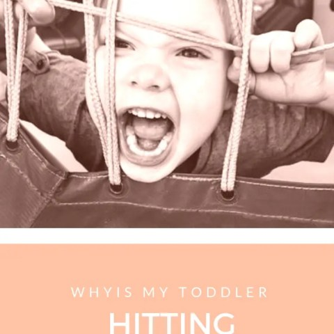 Why Is My Toddler Hitting Herself?