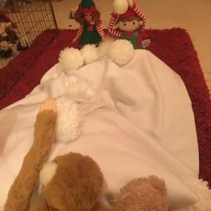 10th of December - elf snowball fight