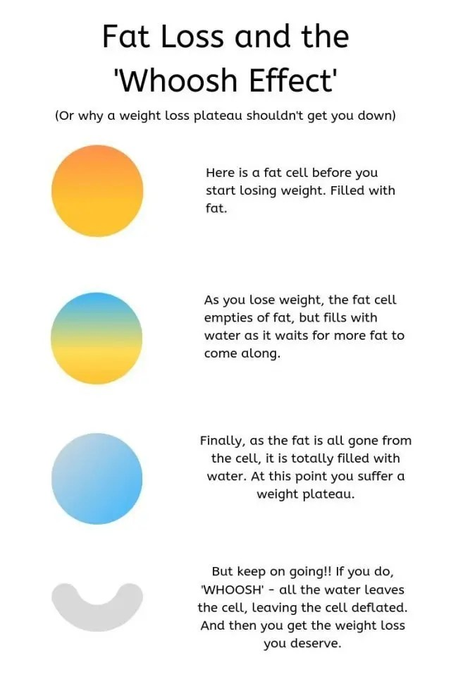 The 1:1 diet by Cambridge Weight Plan. Fat Loss and The WHOOSH effect. Why a weight loss plateau should not get you down. Pictorial explanation of how fat loss works and how you retain water when losing weight. #weightloss #cwp #cambridgediet #one2one #1:1diet #cambridgeweightplan #weightlossplateau #dietingtips #weightlosstips