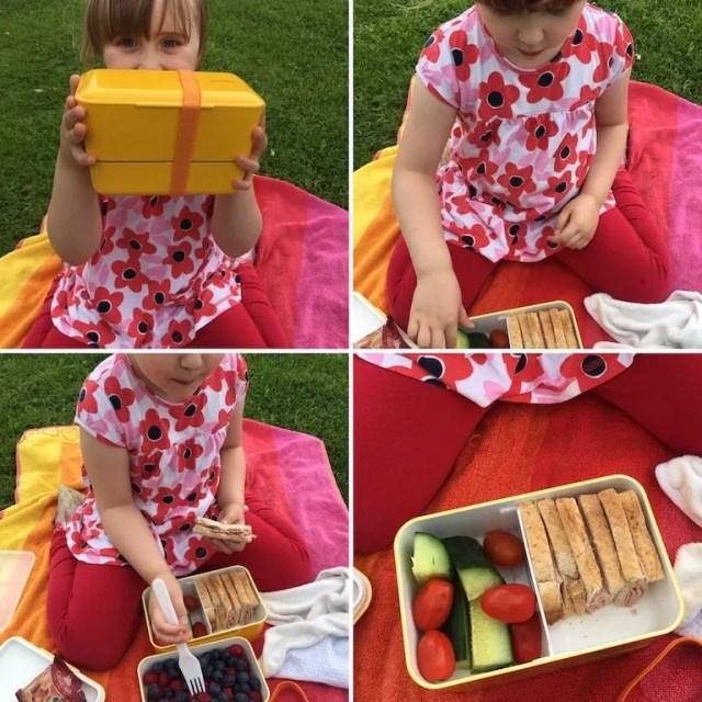 Picnic With A Bento Box