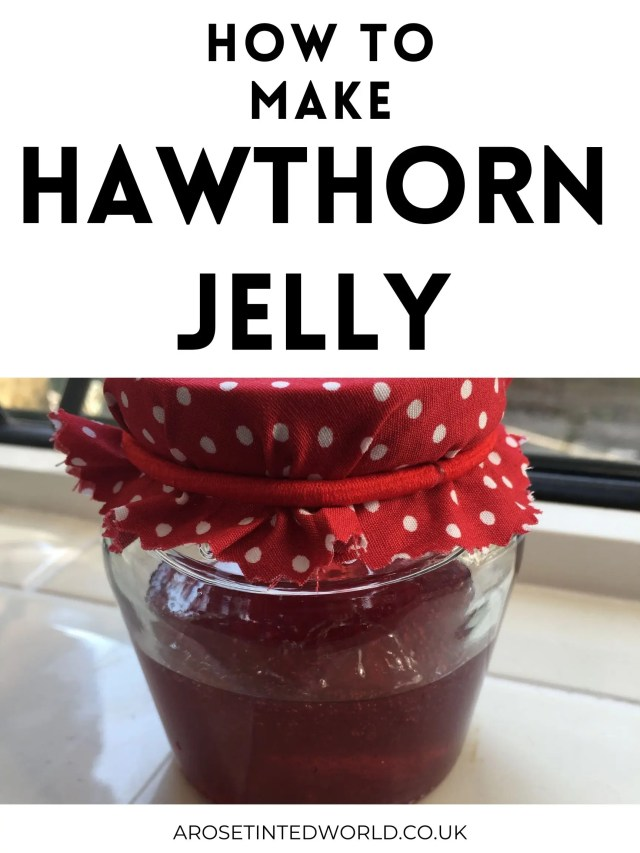 How To Make Hawthorn Jelly - forage for free food, then cook haws from the Hawthorn tree to create wonderful jam. A brilliant homemade gift.