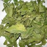 Uses Of Neem Leaves