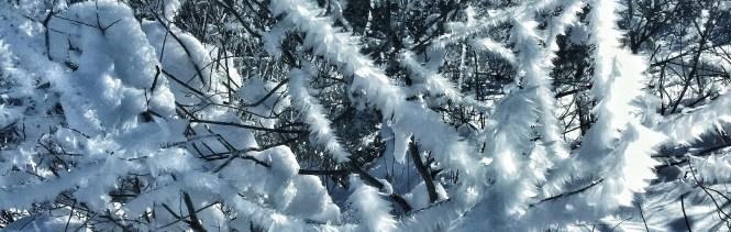 Winterwanderung Kinder Schnee
