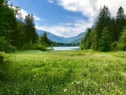 Ein bezaubernder Ausflug zum Zauberwald am Hintersee