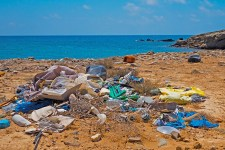 Zero Waste - Plastikmüll adé - Green Life