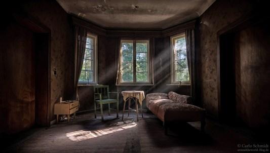 Sigmund Freuds Sofa