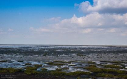 Wattmeer (Unesco)
